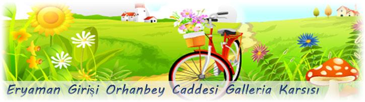 http://www.cicekeryaman.com/banner/banner1.jpg